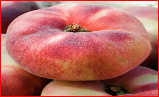 میوه ایرانی که برند سرسبد خارجیها شد