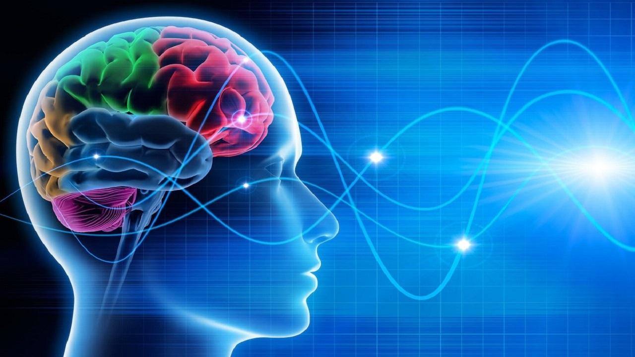 برای تمرکز ذهن چه کنیم؟