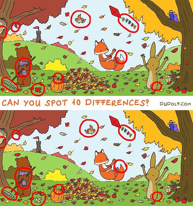 چالش؛ نکتههای پنهان درون عکسها را پیدا کنید