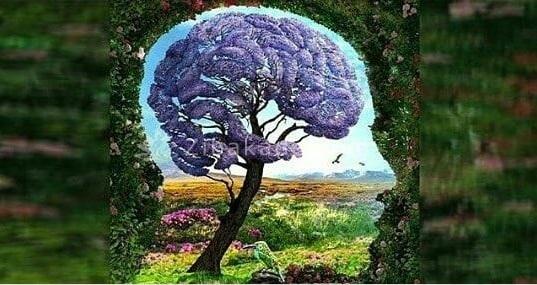 آینده خود را با استفاده از این تست روانشناسی مشخص کنید