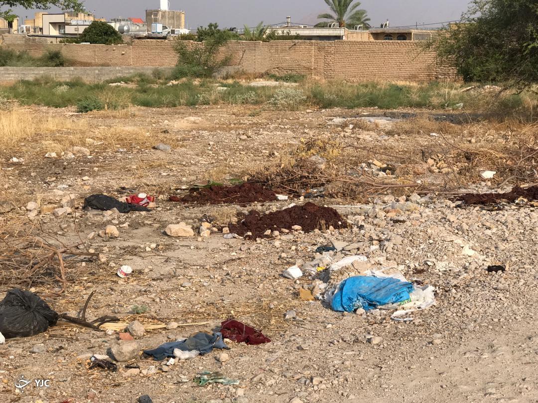 رها سازی زبالهها در سطح شهر عامل ایجاد بیماریهای خطرناک برای شهروندان