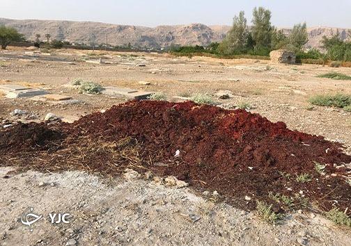 زباله در صحرای تاریخی پوشنج داراب
