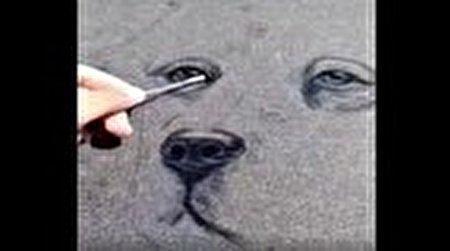 ماشینهای غبارآلود بوم نقاشی یک هنرمند شد+ فیلم