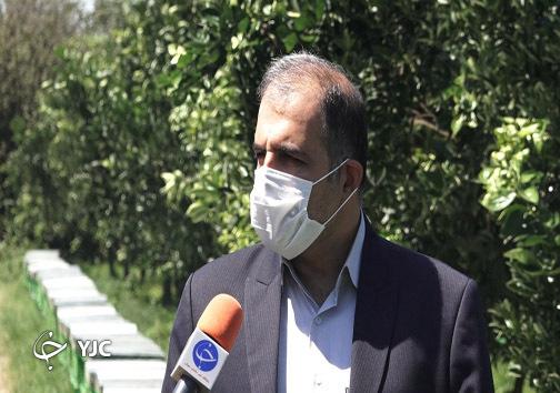 میرمحمدی مدیرعامل اتحادیه زنبورداران مازندران
