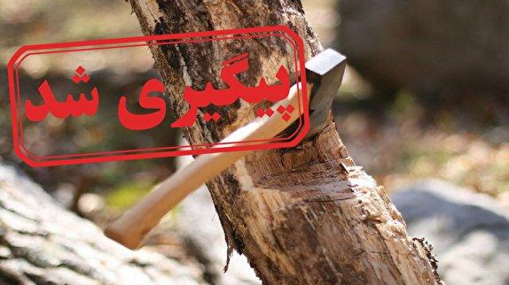 باشگاه خبرنگاران -قلع و قمع درختان جنگلی در اسالم + نتیجه پیگیری