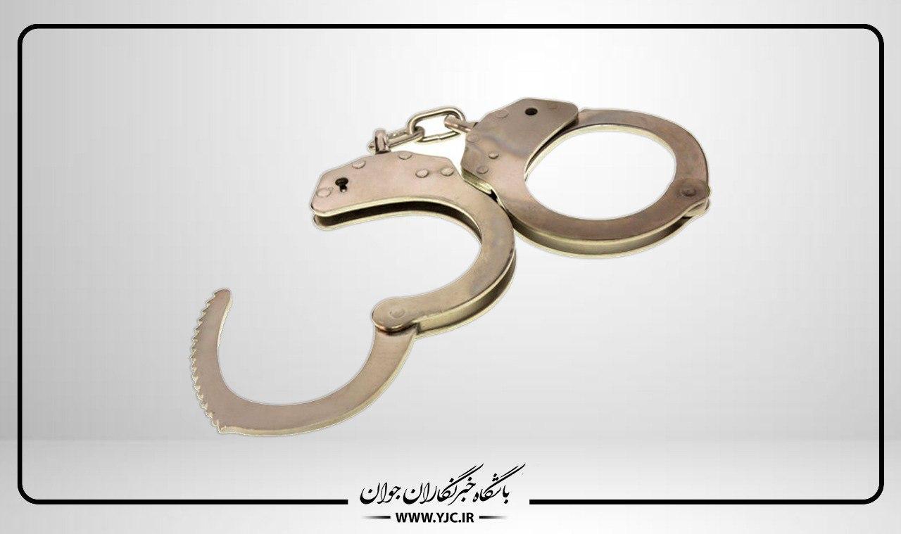 ۱۱ سارق حرفهای در مراغه دستگیر شدند