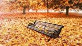 باشگاه خبرنگاران -ریزش برگ درختان در فصل پاییز چه تاثیری بر سرعت چرخش زمین دارد؟