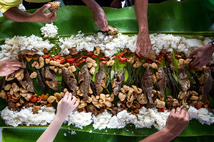 چرا در تایلند ماهی کپور را در کشتزار برنج پرورش میدهند؟