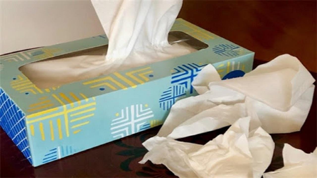قیمت انواع دستمال کاغذی در بازار چقدر است؟