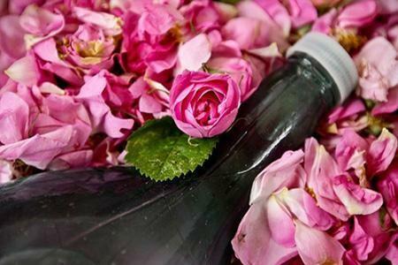 خواص شگفت انگیز گلاب و معجزه آن در زیبایی پوست