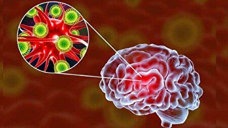 ویروس کرونا چگونه وارد مغز میشود؟