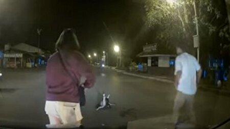 لحظه هیجان انگیز نجات یک گربه از چنگ مار در وسط جاده!