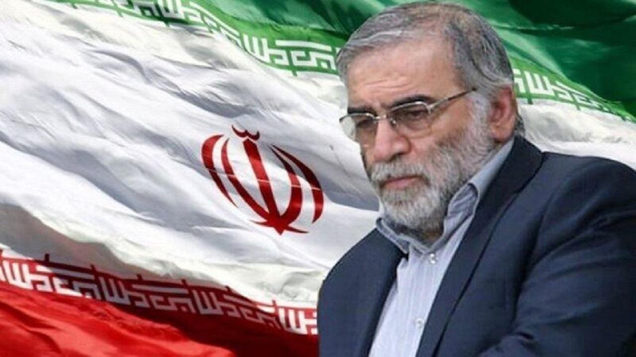 واکنش اهالی هنر به ترور شهید دکتر فخری زاده / فخری زاده افتخار ایران بود