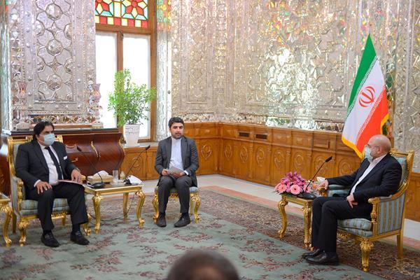 دیدار سفرای ایتالیا و پاکستان با  رئیس مجلس