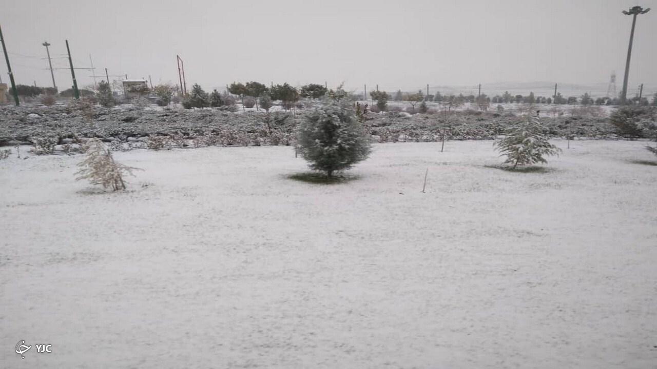 بارش برف پاییزی، مشهد را سفید پوش کرد