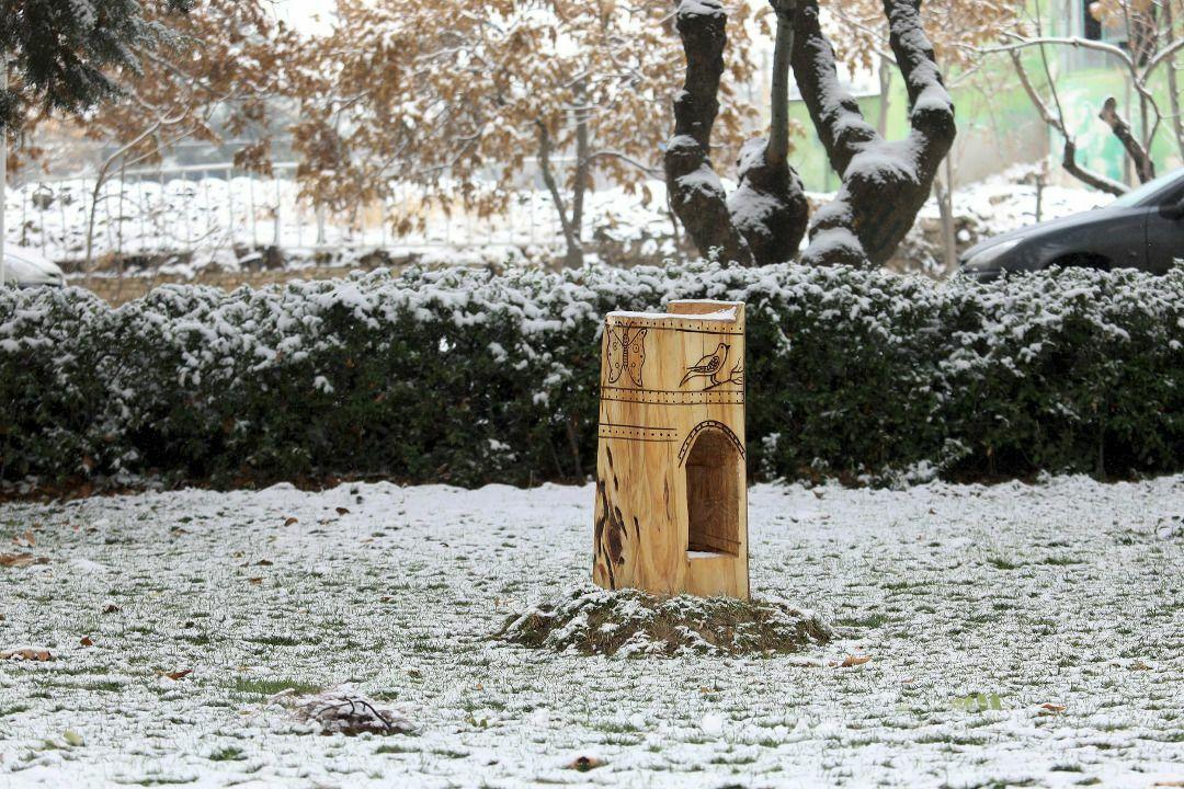 ساخت لانه ویژه پرندگان در بوستان های شهر