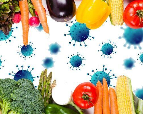 رژیم غذایی در روزهای کرونایی