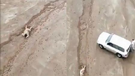 نجات معجزه آسای مرد غرق شده در سیلاب های ینبع + فیلم