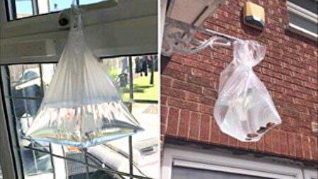 ترفندی جالب برای جلوگیری از ورود مگسها به خانه