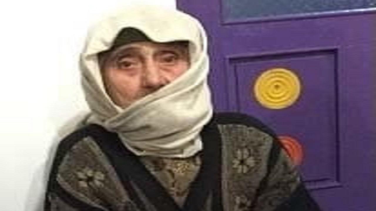 12988840 597 - کار مادر بزرگ ایرانی جهانی شد + عکس