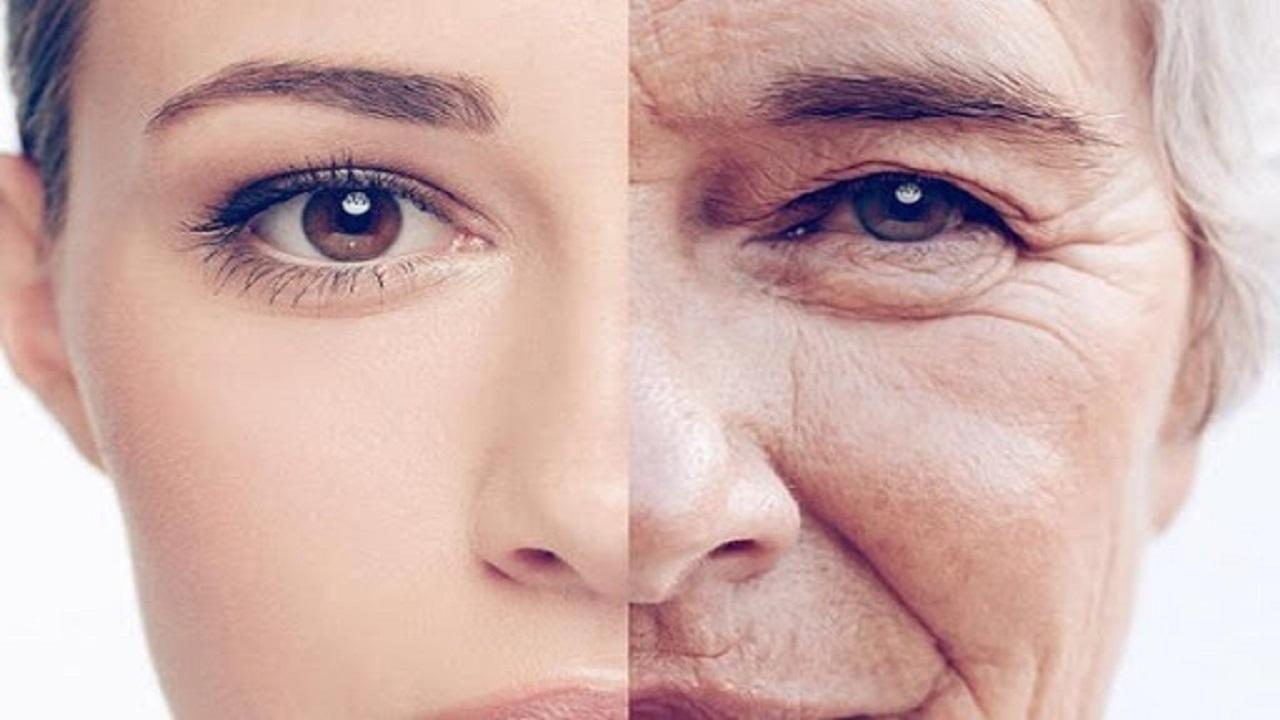 از خوراکی افزایش ایمنی بدن در برابر کرونا تا نکاتی مه روند پیری را کند می کند