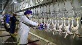 باشگاه خبرنگاران - اشتغالزایی برای ۱۰۰ کارگر در انتظار بازگشایی یک کشتارگاه مرغ