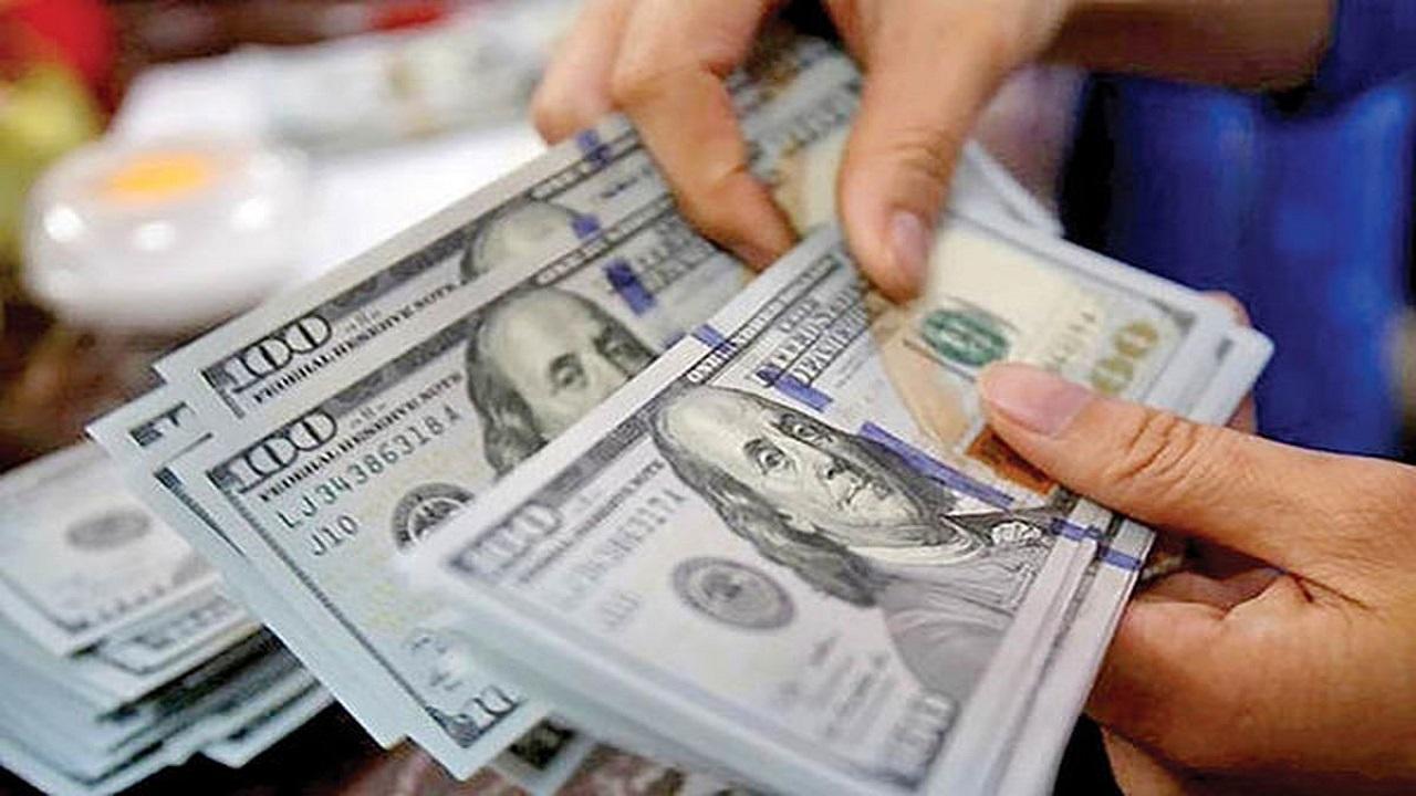 ارز واردکنندگان تامین می شود؟
