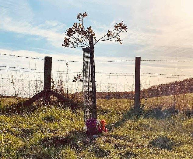 از بین بردن یادبود درگذشتگان براثر یک بیماری