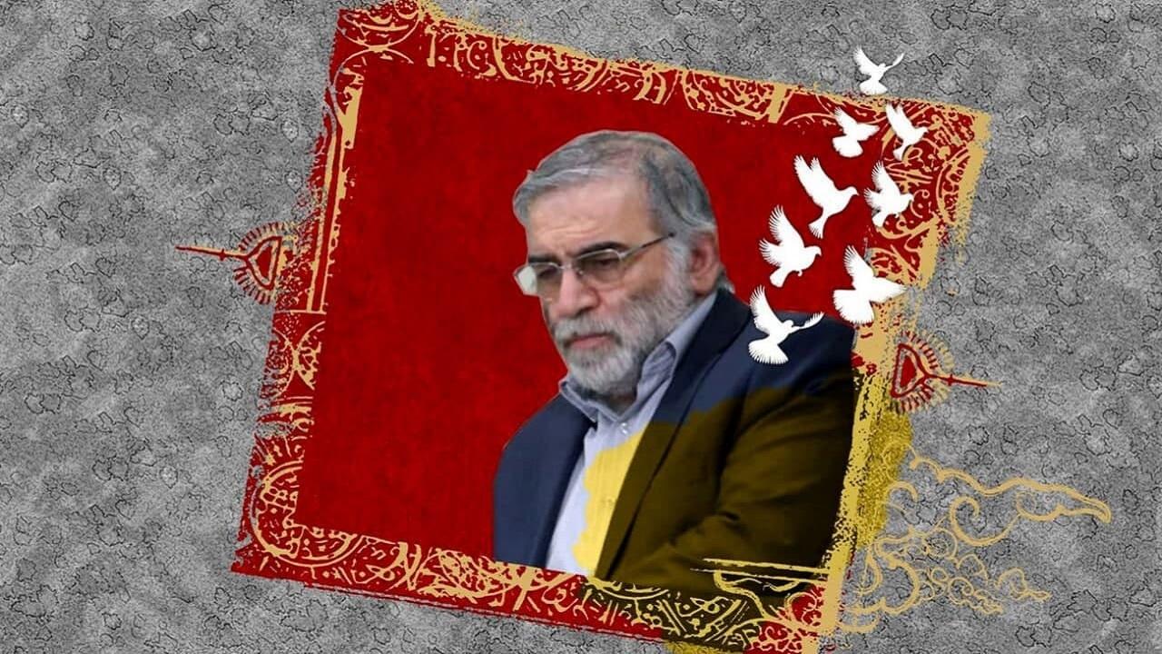 خیابانی در تهران به نام شهید محسن فخری زاده تغییر نام یافت
