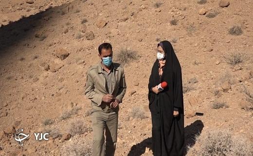 موسوی رئیس محیط زیستبافق