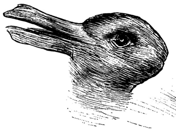 توهم نوری ۱۰۰ ساله، اردک یا خرگوش؟