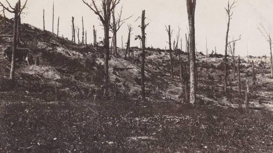 کشف تونلی از جنگ جهانی اول در فرانسه که ۲۷۰ آلمانی در آن زنده دفن شدهاند