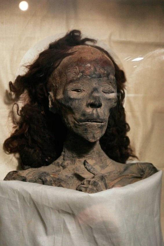 راز شادابی موهای مومیایی ملکه تی پس از صدها سال چیست؟