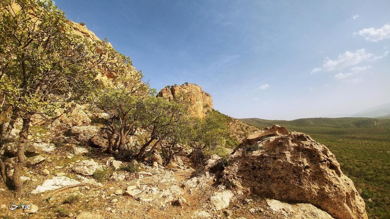طبیعت زیبای دامنه کوه شلم ایلام+ عکس