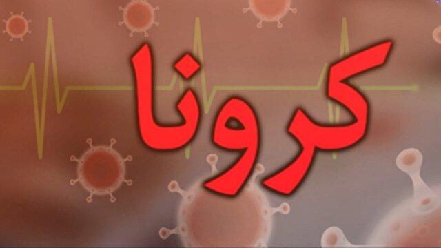 جدیدترین و مهمترین اخبار مرکزی | خبرگزاری باشگاه خبرنگاران