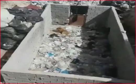 ماجرای نگهداری سگها در مرکز دفن زبالههای مرزن آباد