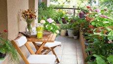 ۱۰ نکته برای ایجاد باغچه در بالکن خانه