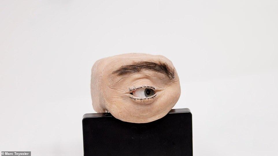 وب کمی شبیه چشم انسان که به شما خیره می شود