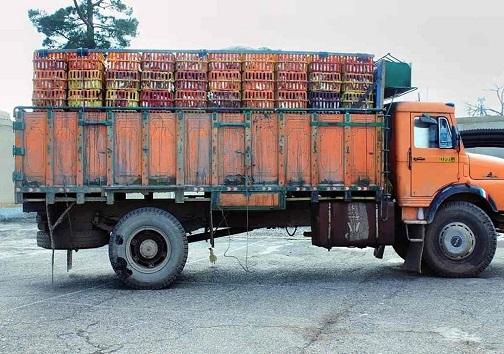 حمل محموله قاچاق با اتوبوس / جلوگیری از خروج غیر قانونی ۴ تُن مرغ زنده در تیران وکرون