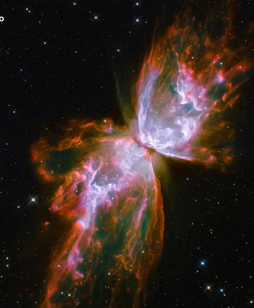 پروانه کیهانی
