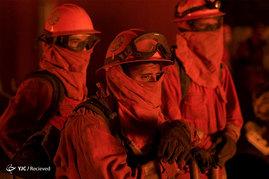 آتش سوزی جنگل های سانتا کروز در ایالت کالیفرنیا