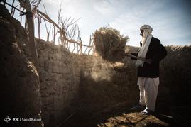 بعضی از افراد در روستا توانسته اند با دام هایی که بسختی پرورش میدهند وضع بهتری نسبت به مابقی روستاییان داشته باشند.