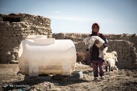 خشک سالی در منطقه هامون باعث شده تا مردم بسختی روزگار بگذرانند.