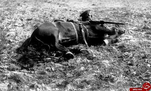 سرباز روس پشت جسد اسبش سنگر گرفته است