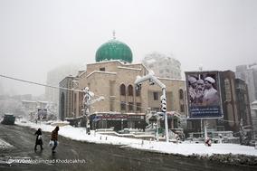 رخت سپید بر تن پایتخت