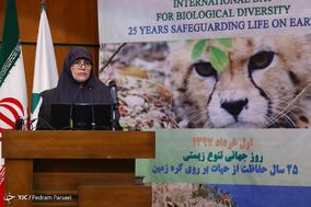 همایش روز جهانی منابع طبیعی