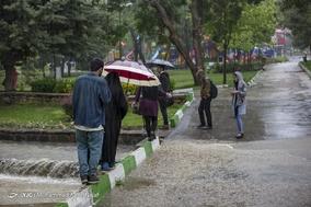 بارش باران بهاری در همدان