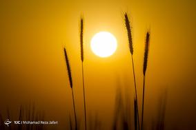 طبیعت زیبای دهدز ـ خوزستان