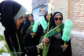 پیاده روی حرم تا حرم دختران شیرازی