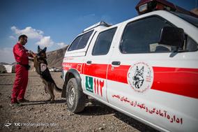 اولین مانور مشترک سگ های آنست ایران و صلیب سرخ آلمان در اصفهان